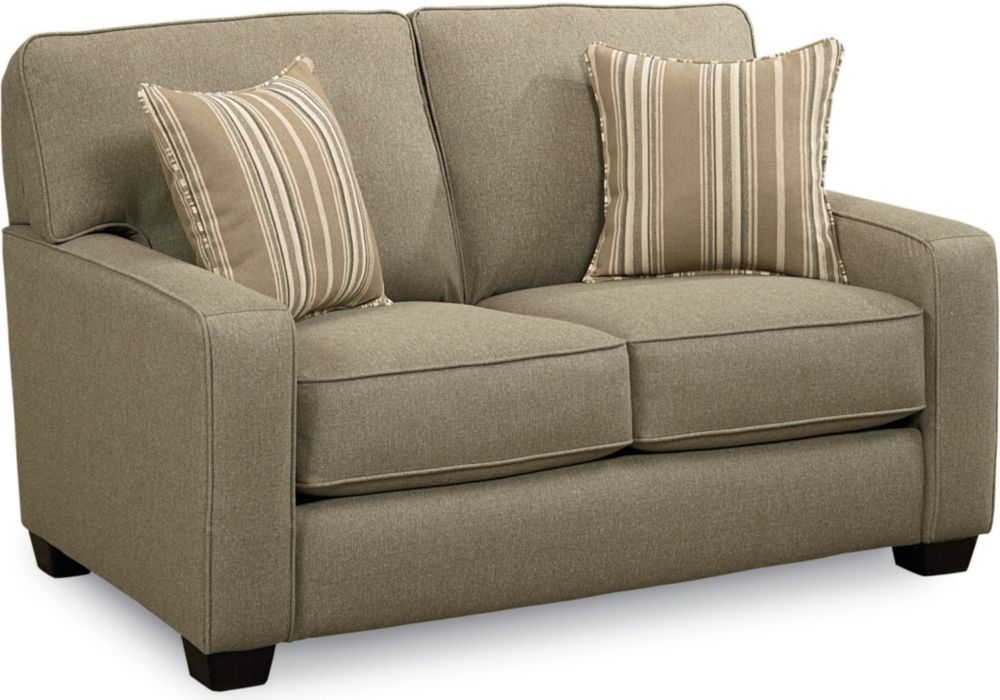 Sleeper Loveseat Sofa