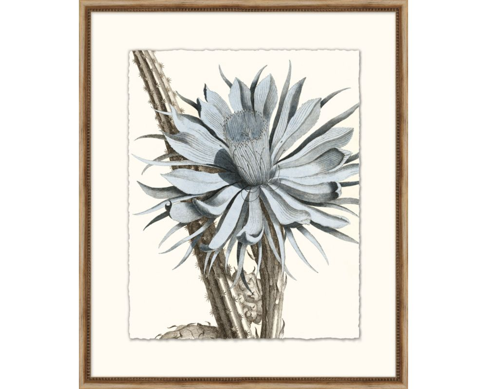 Azure Botanical 4