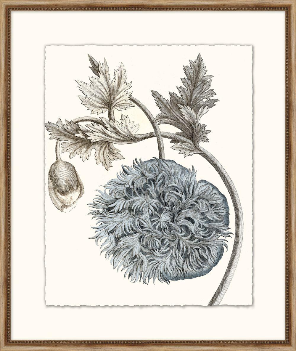 Azure Botanical 5