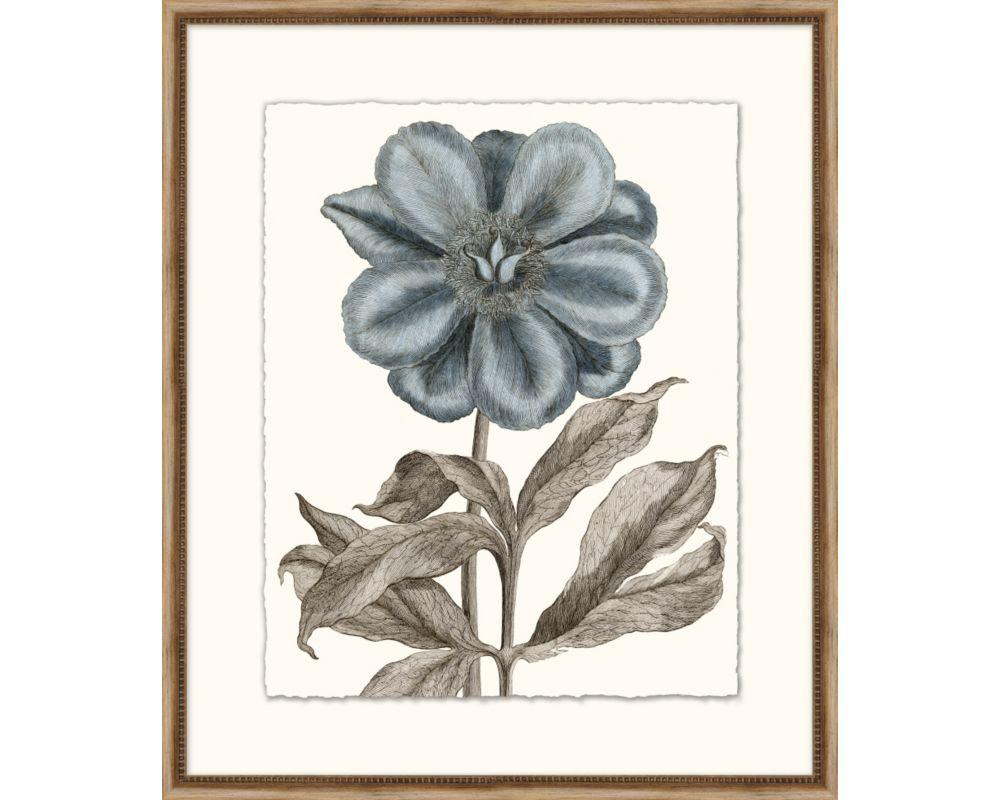 Azure Botanical 6