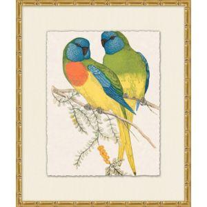 Tropical Parrot 2