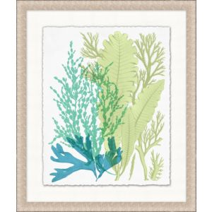 Deep Sea Kelp 4