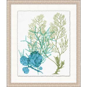 Deep Sea Kelp 9