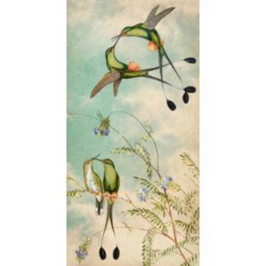 Hummingbird Garden Panel 4
