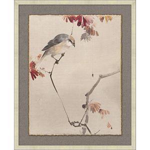 Eastern Birds 3