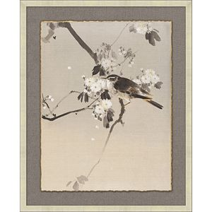 Eastern Birds 1